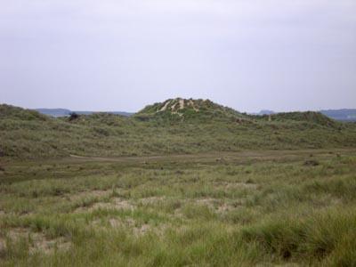 dune-land.jpg