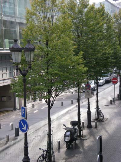 place-du-marche-st-honore.jpg