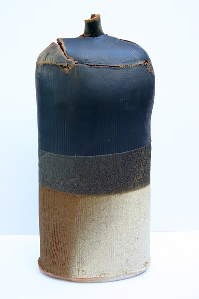 02a-high-fired-saltmarsh-bottle-52-x-21-cm.jpg