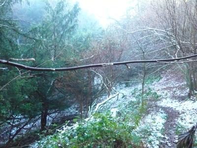 a-frosty-descent.jpg