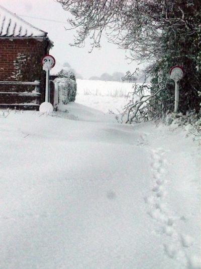 a-snowdrift.jpg