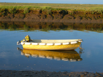 yellow-boat.jpg