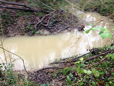 a silt stream