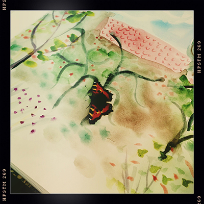 butterfly on painting