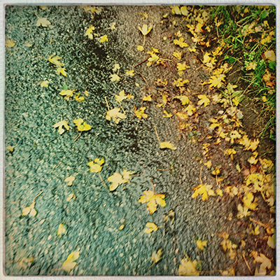 1runningleaves on road