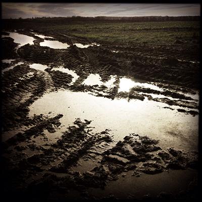 1sharringtonpuddles