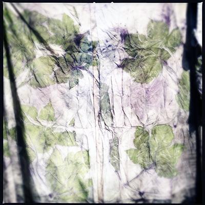 sycamoreon kimono lining
