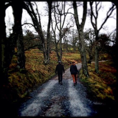 walking under ash trees Dunkeld