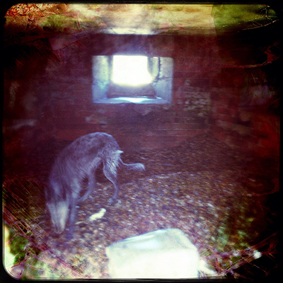 weybourneapril16_1161